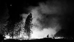 <b>Man made fires are more destructive than natural wildfires</b>